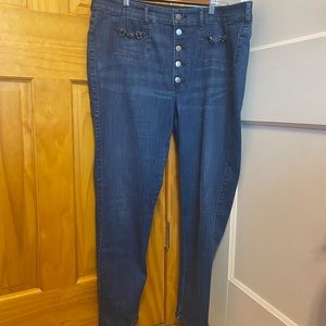 High-Waisted Express Jeans (Plus Size)